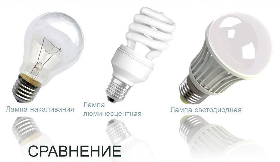 Лампочки в Санкт-Петербурге – цены, фото, отзывы, купить